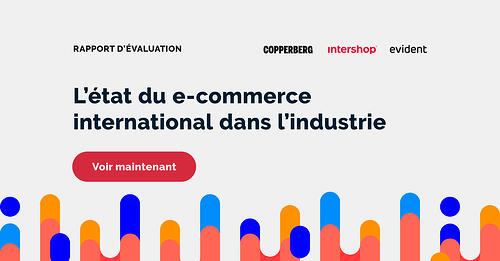 Intershop_French_banners_1149x600