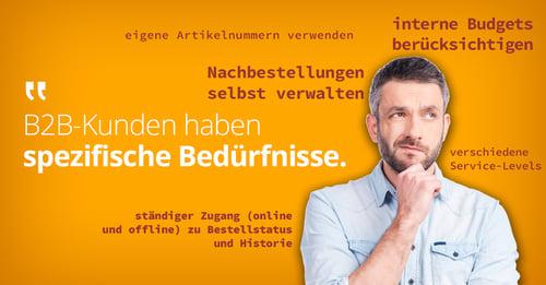 b2b-user-needs_DE